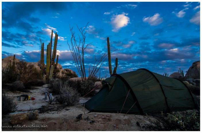 Camping im Kaktuswald
