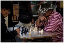 Eine Art Verein organisiert die Schachspielfreunde.