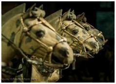Auch die Pferde sind prima gearbeitet und das Zaumzeug ist sehr deteilliert.