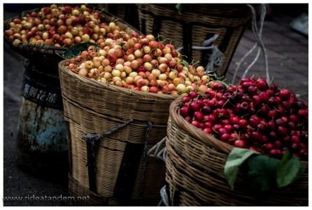 Nachdem wir schon durch Apfel-, Birnen-, Wein- und Aprikosenhaine gekommen sind, sind jetzt die Kirschen dran.