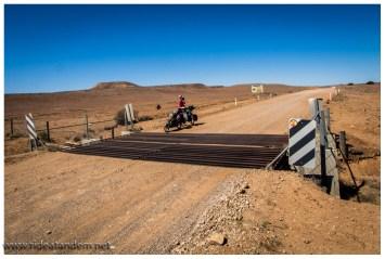 Kurz vor Marree begegnen wir dann auch der australischen Antwort auf die chinesische Mauer. Der Dog-Fence ist mit über 5000km lang und soll Dingos von den Schafsherden fernhalten. Wir haben allerdings Dingos auf beiden Seiten des Zauns gesehen. Klappt also.....