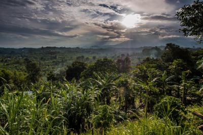 Uganda Ausblick