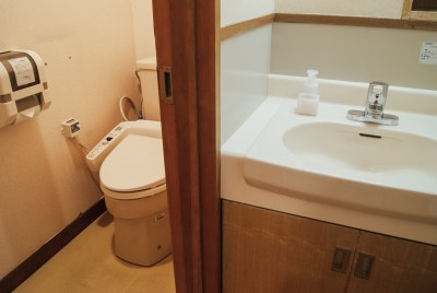 Amended sink and toilet