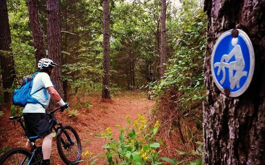 So you just bought your first real mountain bike, now what?