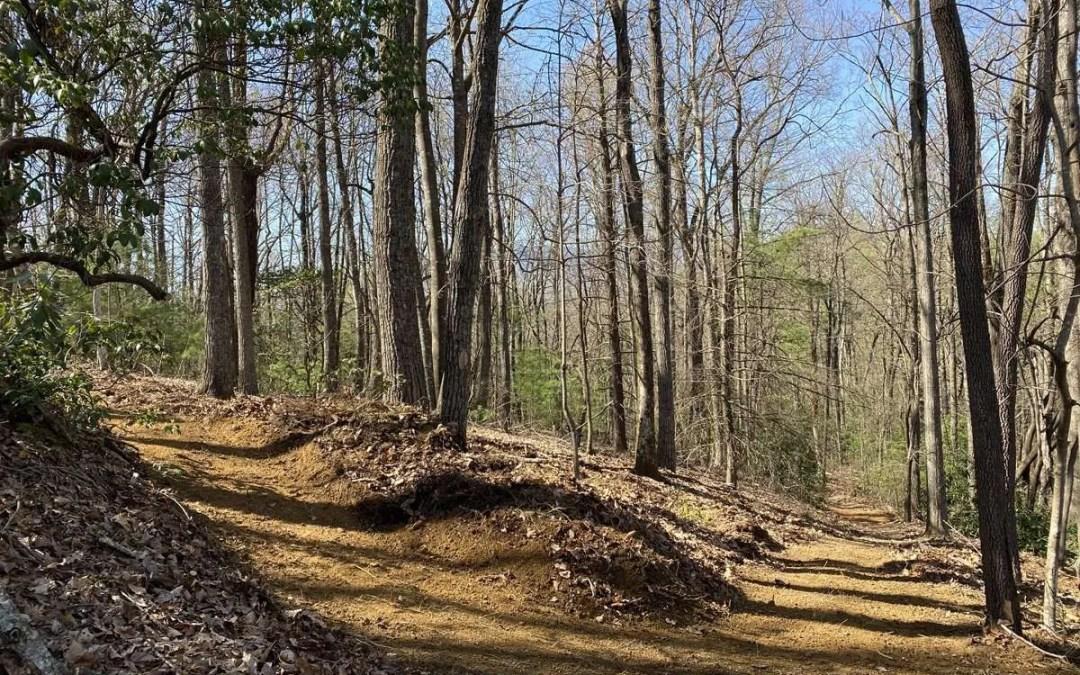 Photo Gallery: Yancey Ridge Trail Renovation