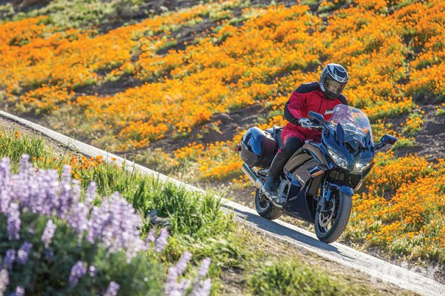 2016 Yamaha FJR1300ES, California poppies