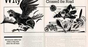 Why The Chicken Crossed The Road - Original Magazine Spread. Illustration by Dan Quarnstrom, www.danquarnstromdesign.com.
