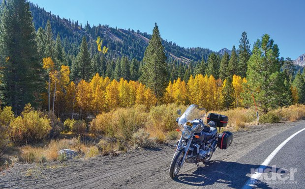 Colorful aspens along June Lake Loop (State Route 158). Photos: the author.