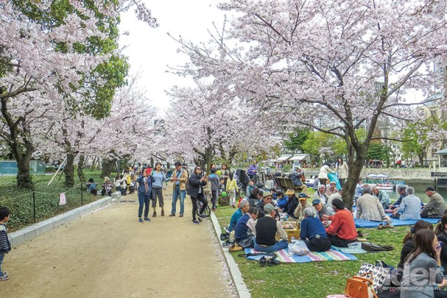 Above: Picnicking under the glorious cherry blossoms in Hiroshima Peace Memorial Park. Below: The Genbaku Dome was the only building left standing after the atomic bomb wiped out the city in August 1945. It has been preserved in Hiroshima Peace Memorial Park as a stark reminder of the horror.