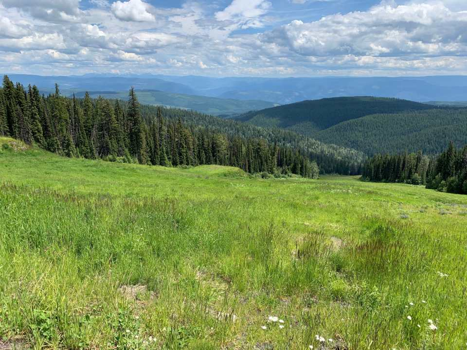 A view from the Cross Mountain Trail at SilverStar Mountain Resort