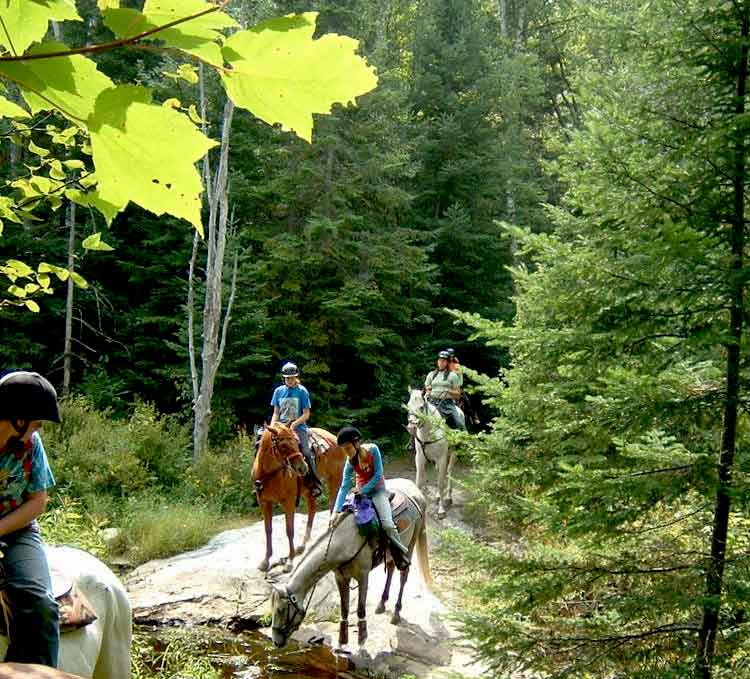 Trail Riding near Algonquin Park, Ontario. Public Riding Stables. Horse Camps & Equestrian Programs near Algonquin Park, Ontario. Close to Toronto, Barrie, Ottawa, Orillia, Kingston & London