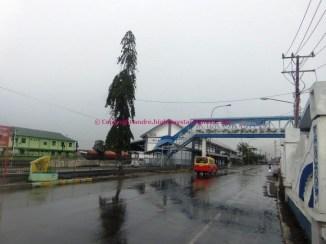 medan-belawan-pt-1-20_800x600