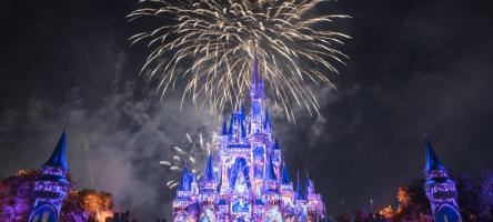Magic Kingdom Fireworks at Walt Disney World
