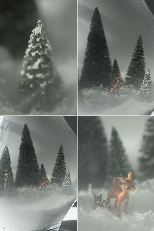 DIY Snowy Terrarium (4)   Ridgely's Radar