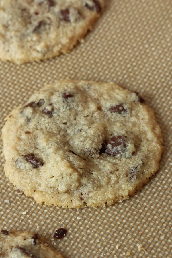 The Best Gluten Free Chocolate Chip Cookies (2) | Ridgely's Radar