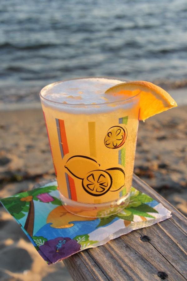 Lisa's Pineapple Mandarin Cocktail (1)   Ridgely's Radar