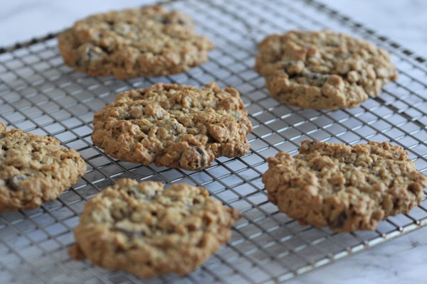 Gluten Free Oatmeal Chocolate Chip Cookies | Ridgely's Radar