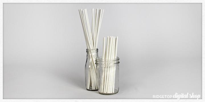 Ridgetop Digital Shop | Options for Photo Prop Sticks