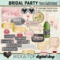 Ridgetop Digital Shop | Bachelorette Party - Champagne Photo Props | Bridal Shower Photo Booth | Hen Party
