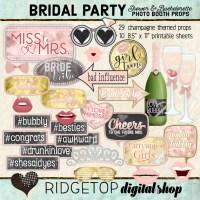 Ridgetop Digital Shop   Bachelorette Party - Champagne Photo Props   Bridal Shower Photo Booth   Hen Party