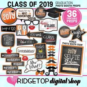 Class of 2019 Photo Props - Orange