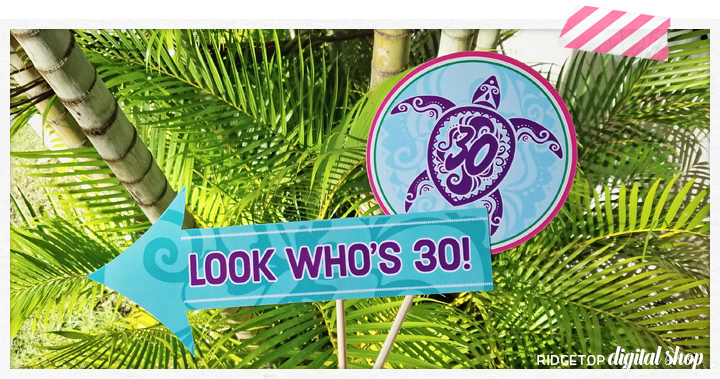 Ridgetop Digital Shop | Luau 30th Birthday Photo Props