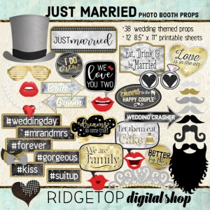 Ridgetop Digital Shop | Just Married Photo Props | Wedding Photo Booth