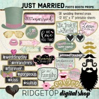 Ridgetop Digital Shop | Just Married - Dusty Pink and Sage Photo Props | Wedding Photo Booth
