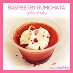 Raspberry RumChata Jello Shot Recipe