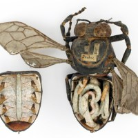 19th century papier-mâché anatomical bee and beetle models