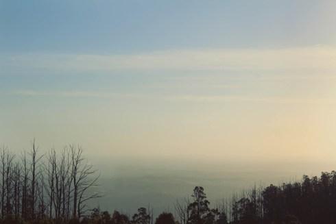 The view to Melbourne CBD