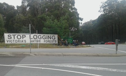 Knitting Nannas of Toolangi