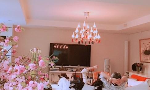 お部屋でお花見🌸豪華な八重桜の会