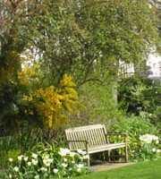 夜のおさんぽ、秘密の花園