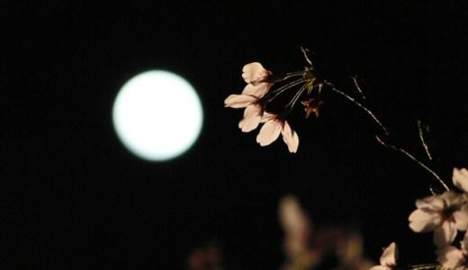 2019年の栗名月と言われる「十三夜」は10月11日です。