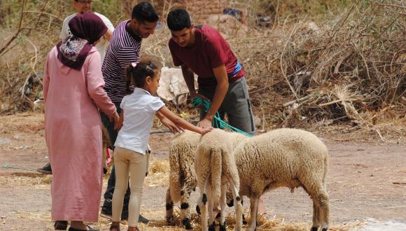 صرف إعانات للقيمين الدينيين بمناسبة عيد الأضحى المبارك