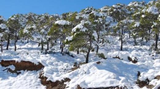 امطار وثلوج متوقعة بمنطقة الريف ابتداء من الاثنين المقبل