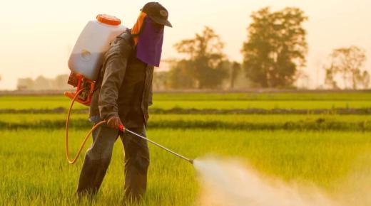 """""""أونسا"""" تكشف حقيقة دخول مبيدات زراعية غير مرخصة إلى المغرب"""