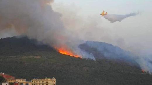 حريق غابة باب برد يقطع طريق الحسيمة ويخلف أضرارا كبيرة (صور)