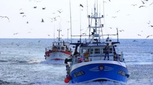 رغم قوانين وزارة أخنوش المشددة، لوبيات تهريب الأسماك تلجأ إلى خطط بديلة
