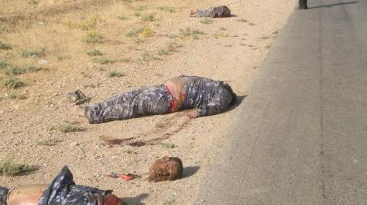 وباء قطع الرؤوس يصل إلى مصر !!