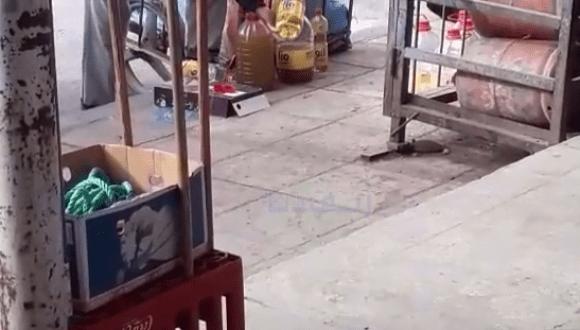 تحقيق: كاميرا خفية تبرز عملية الغش بخلط زيت الزيتون بزيوت الطعام ( فيديو)