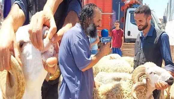 ربورطاج من سوق أحد بني شيكر.. آراء صادمة حول الأثمنة قبيل عيد الأضحى