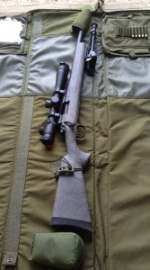 Remington 700 AAC 308