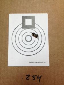 190 grain SMK at 100 yards.  Not bad!
