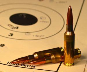 6.5 x 47 Lapua cases loaded with 120 grain Scenar L bullets.