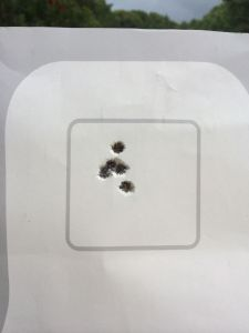 Representative 100 yard group.  This one was fired on a QIT-99 head box during the zeroing process.