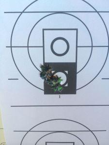 16 inch 308 700 175 SMK at 100 yards