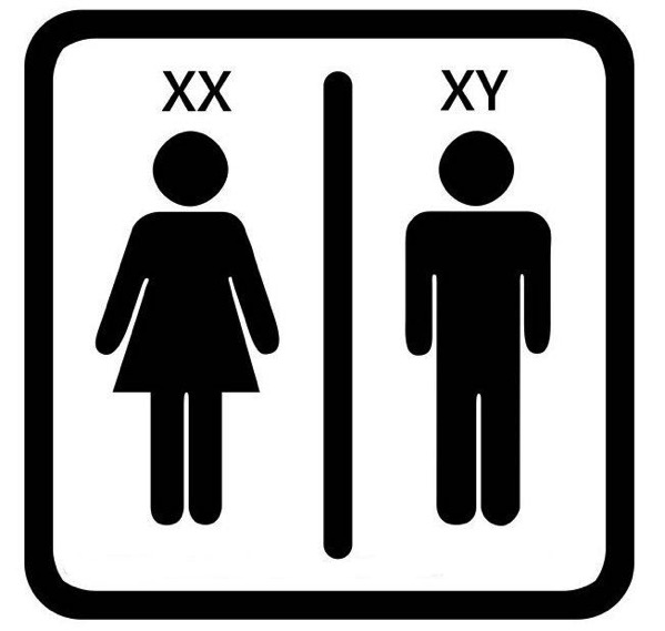 No gender offenders