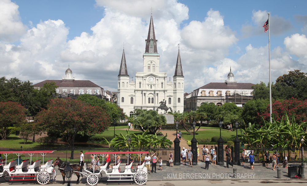 St. Louis Cathedral by Kim Bergeron